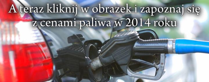 Ceny paliwa w Chorwacji w 2014 roku