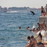 Pies skaczący do wody w Zadarze