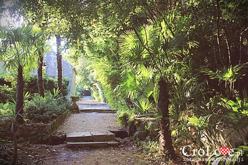 Roślinność w Arboretum Trsteno