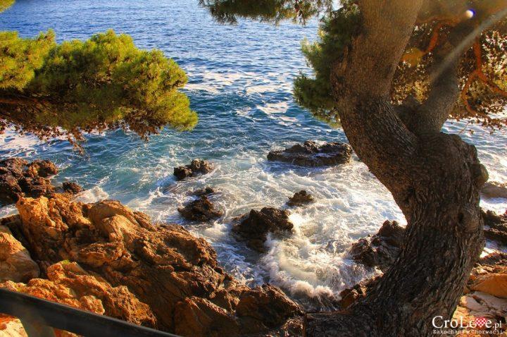 Widok na Adriaty z jedej z alejek w Cavtacie