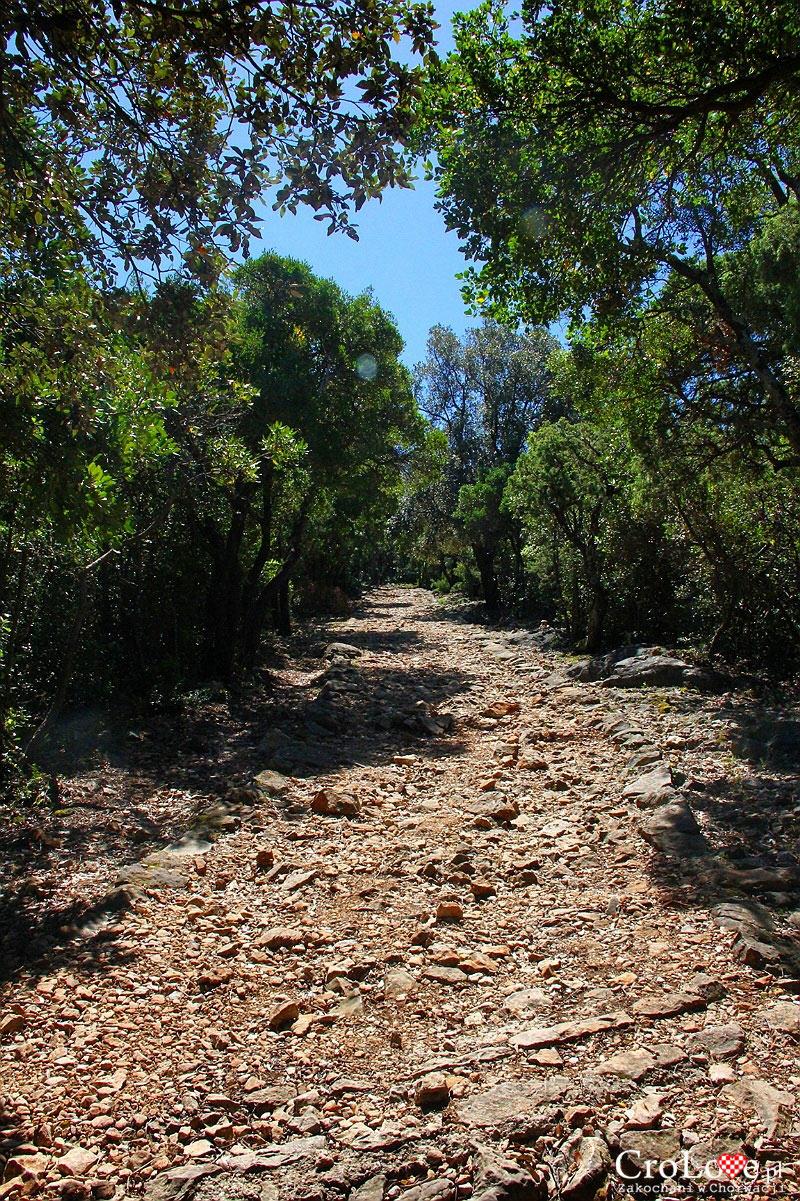 Ścieżka na wyspie Lokrum