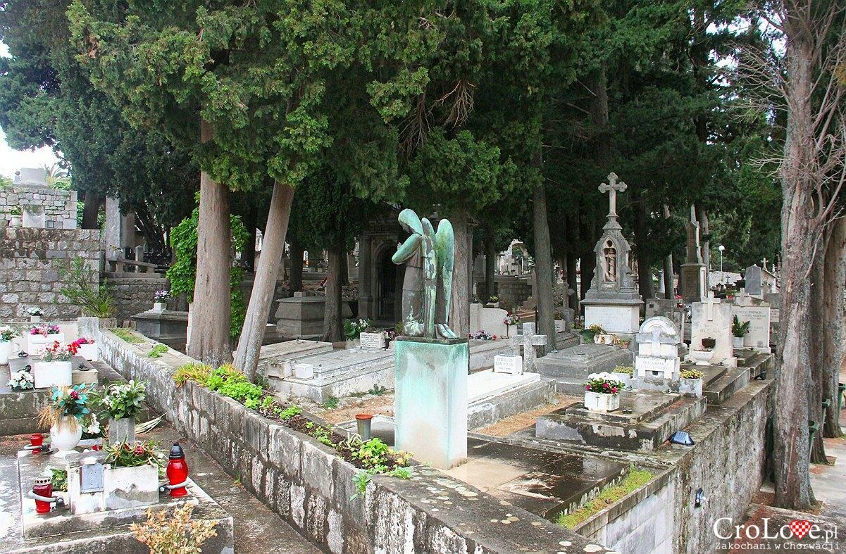 Cmentarz miejski w Dubrowniku