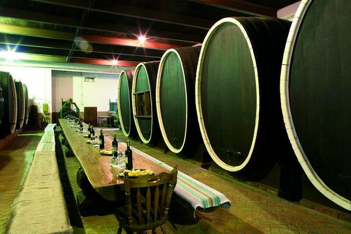 Piwnice z beczkami wina w Ilok