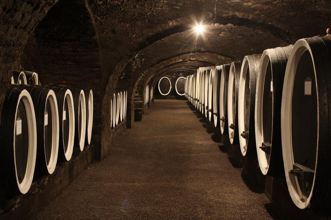 Piwnica z beczkami wina w Kutjevo