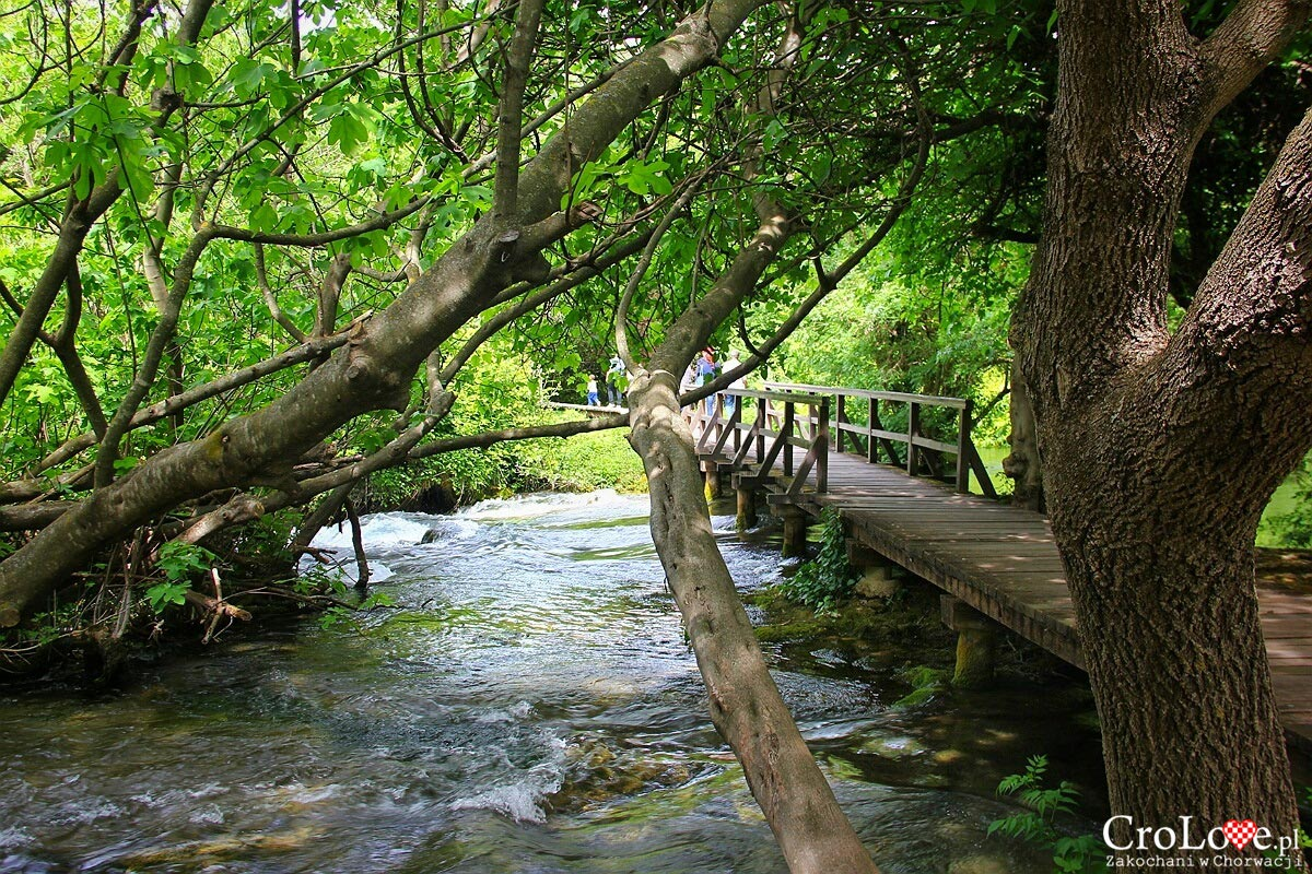 Malowniczo położone ścieżki w Parku Narodowym Krka