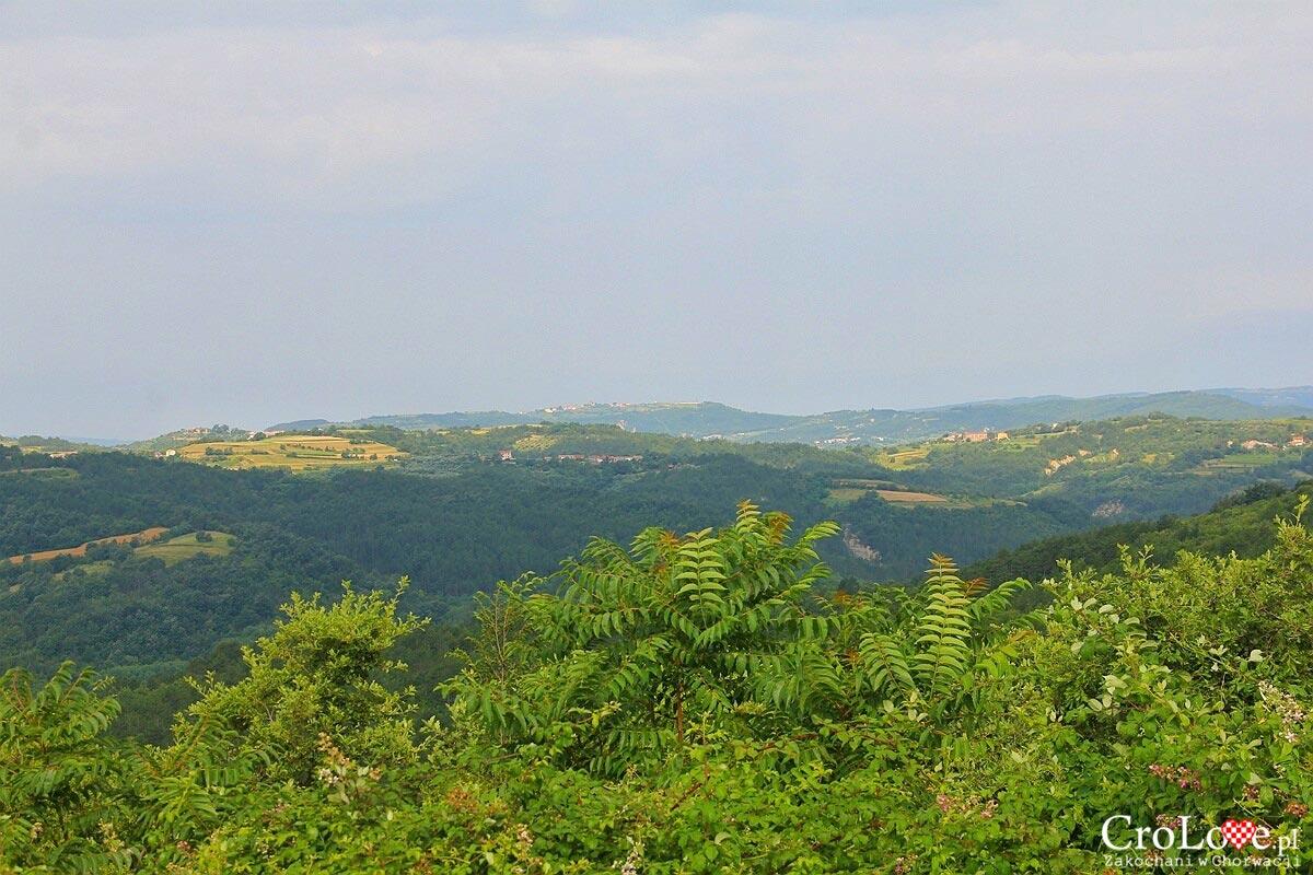 Panorama okolicy widzianej z Hum