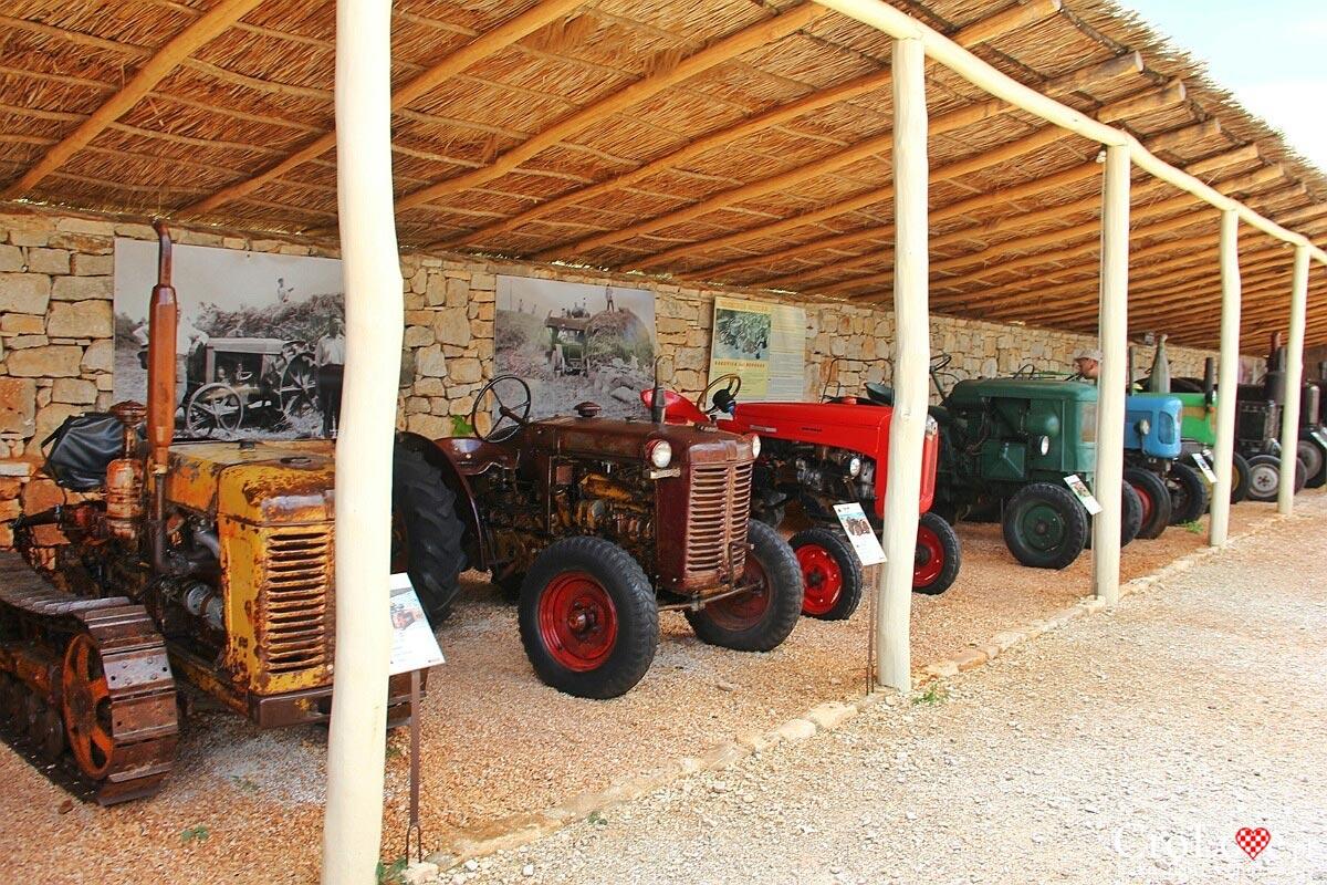 Kolekcja traktorów w Traktor Story