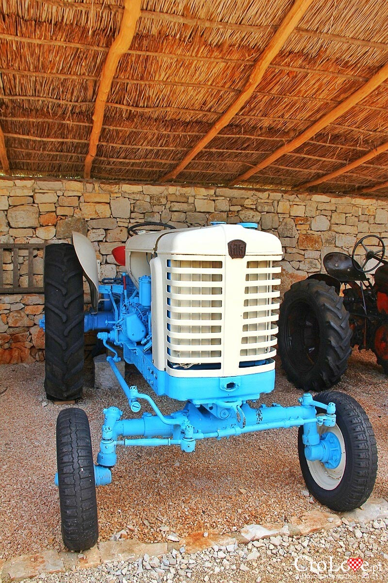 Traktor MTZ 5 z 1958r