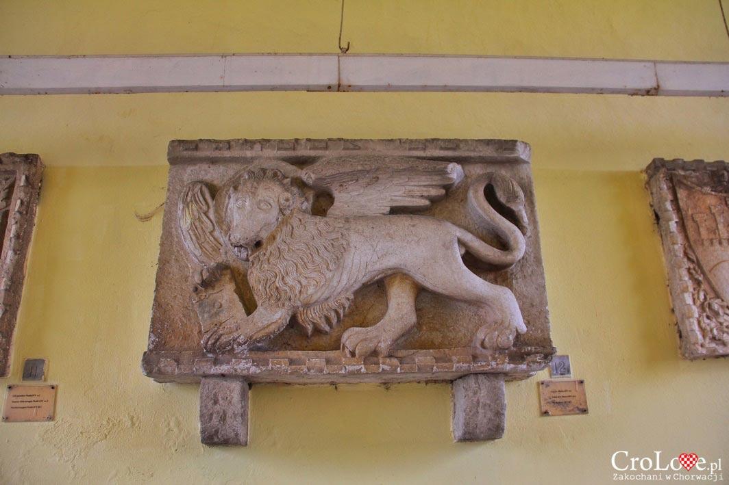 Lew wenecki w Motovun
