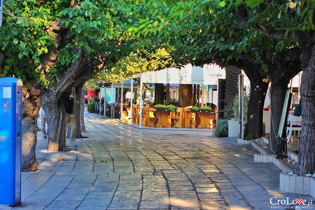 Promenada w Makarskiej