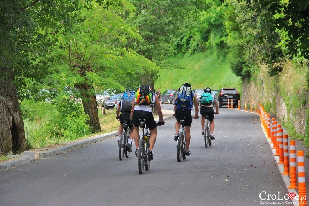 Okolice Motovun to świetne miejsce na wycieczki rowerowe