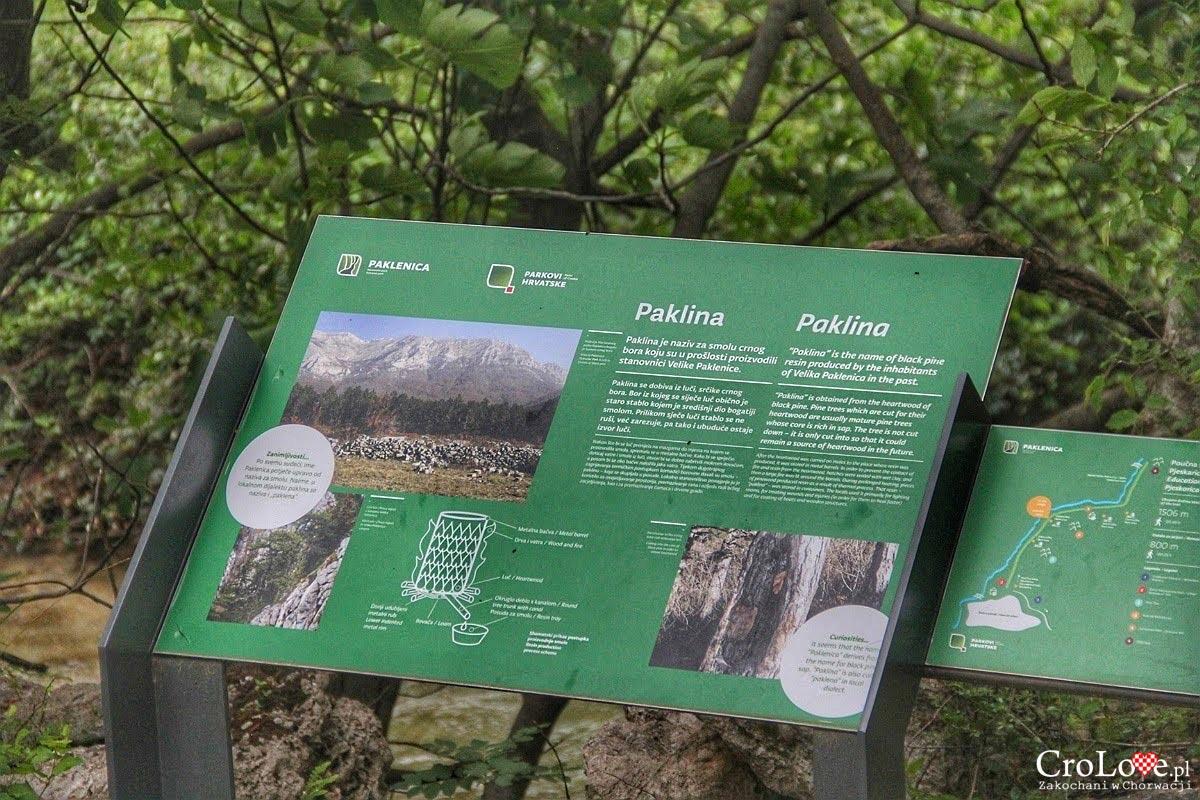 Fauna i flora - Park Narodowy Paklenica