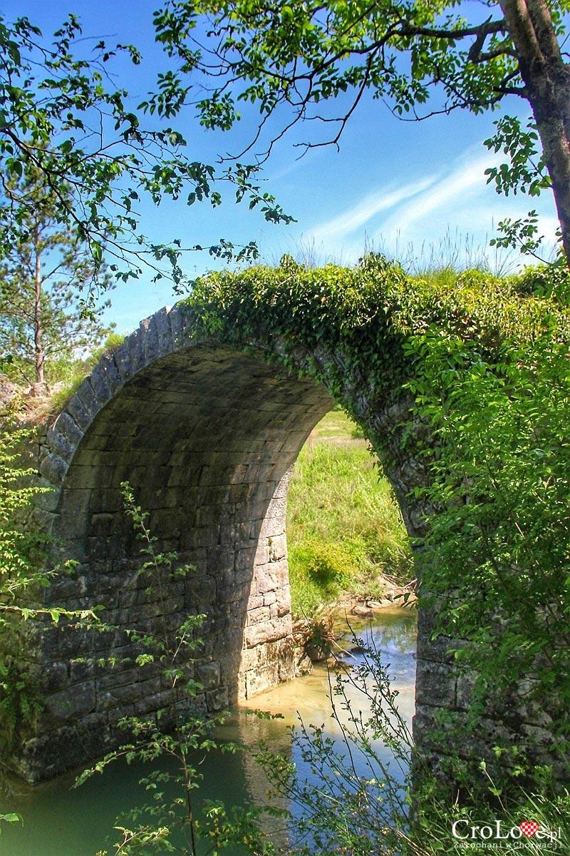 Most Napoleona - Szlak siedmiu wodospadów