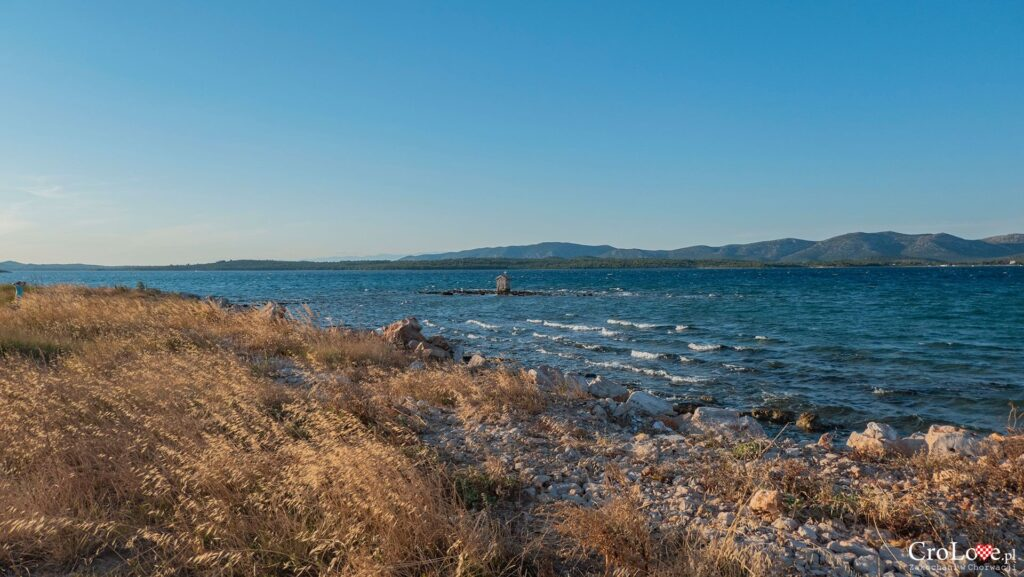 Betina na wyspie Murter