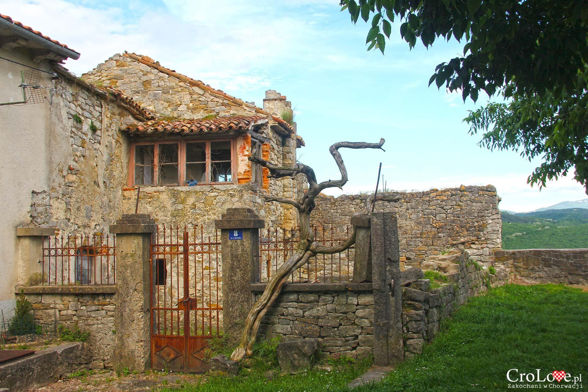 Buzet na półwyspie Istria