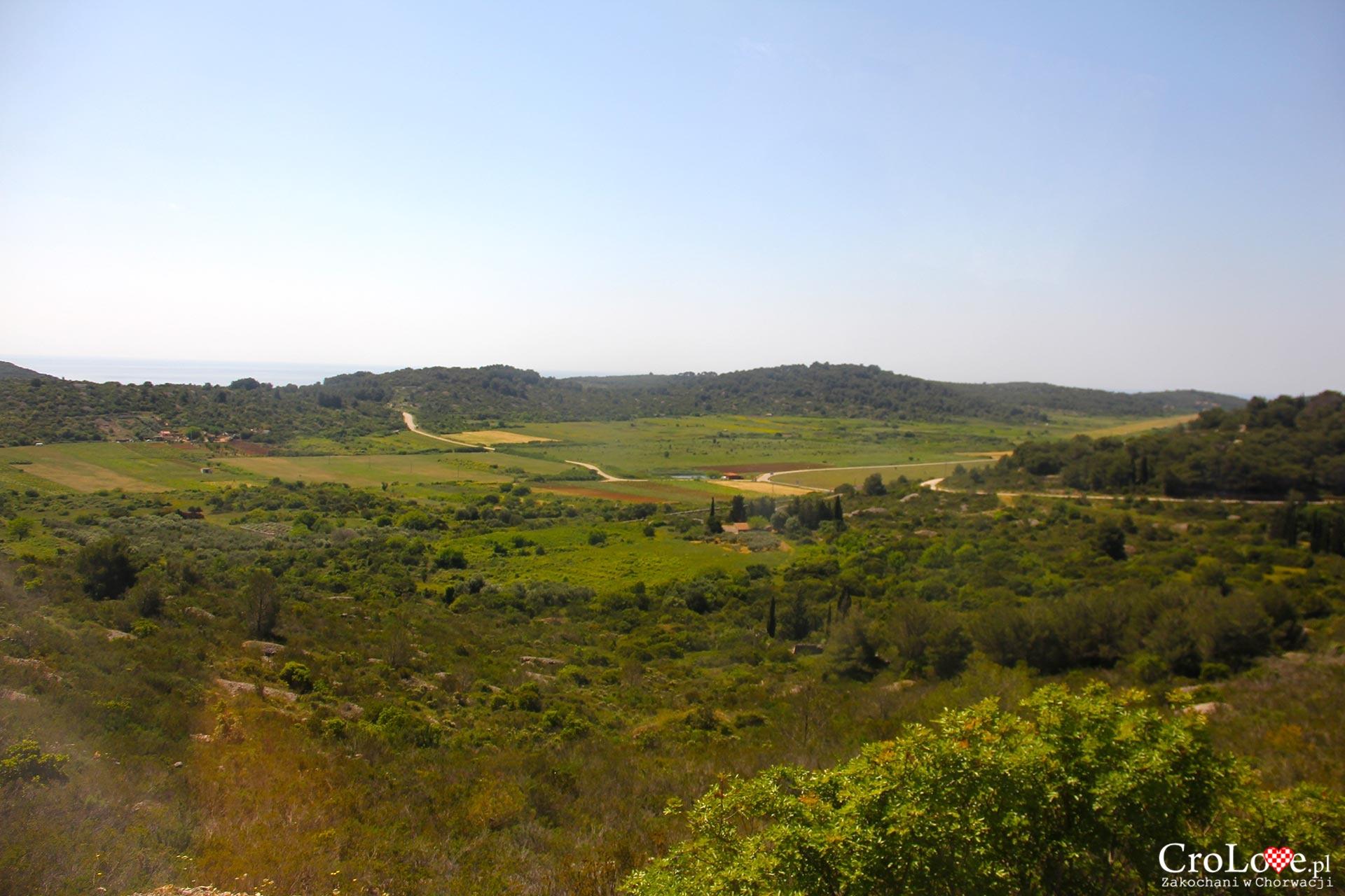 Lądowa część wyspy, okolice lotniska z czasów IIWŚ