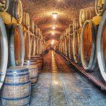 Winnice w Chorwacji – Slawonia