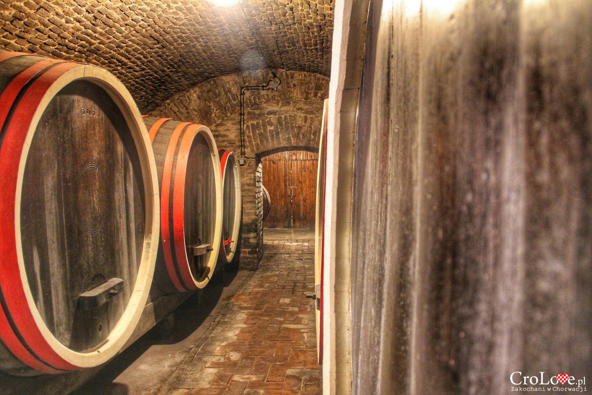 Piwnice z winem w Đakovo