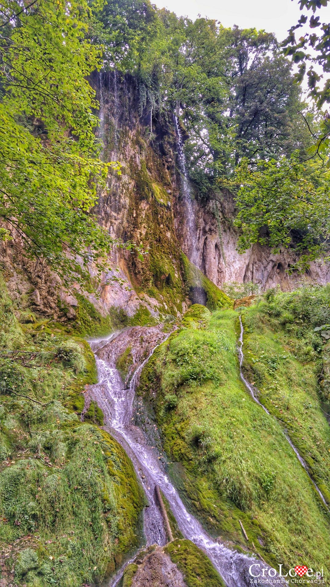 Park przyrodniczy Papuk