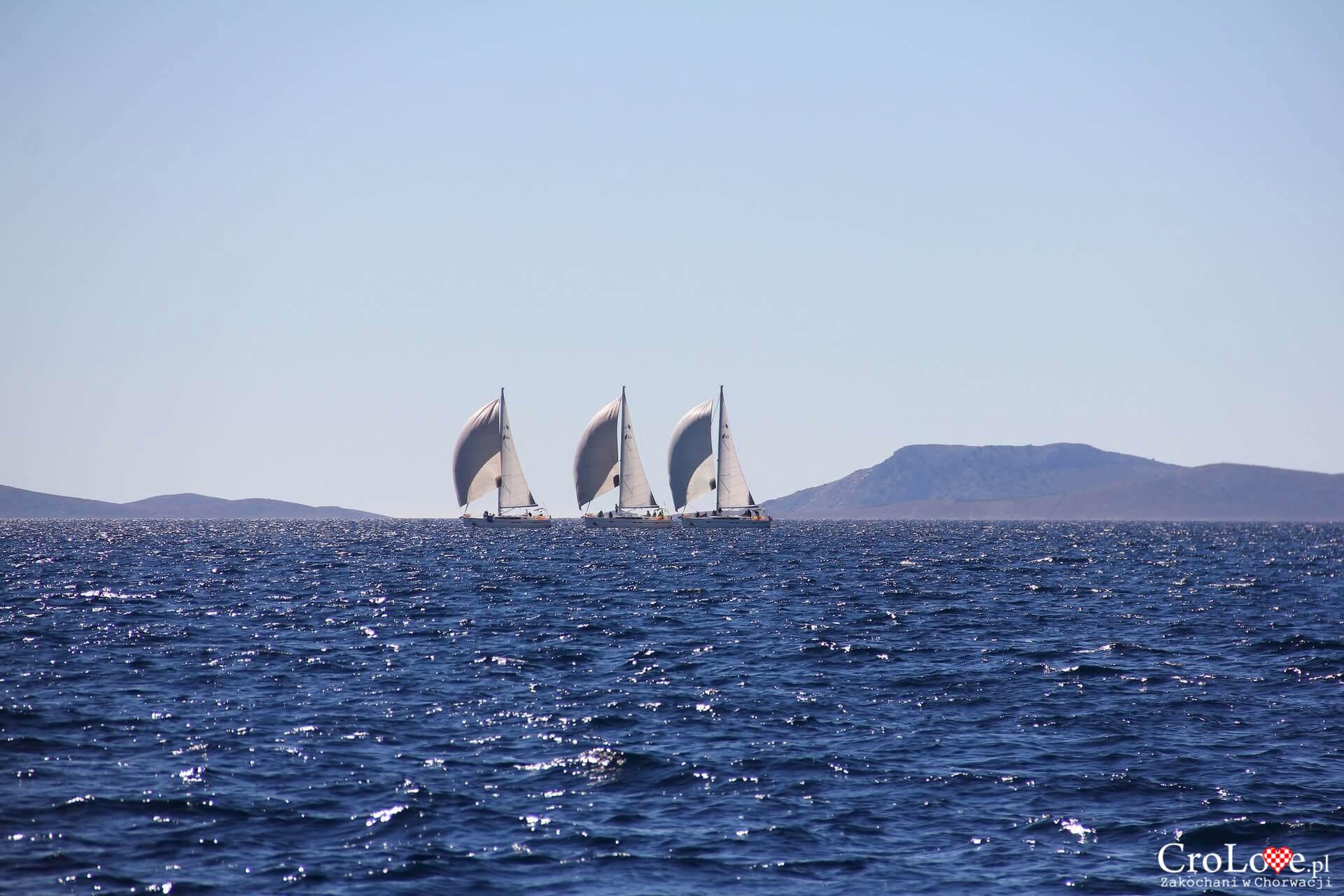 Rejs jachtem po Adriatyku
