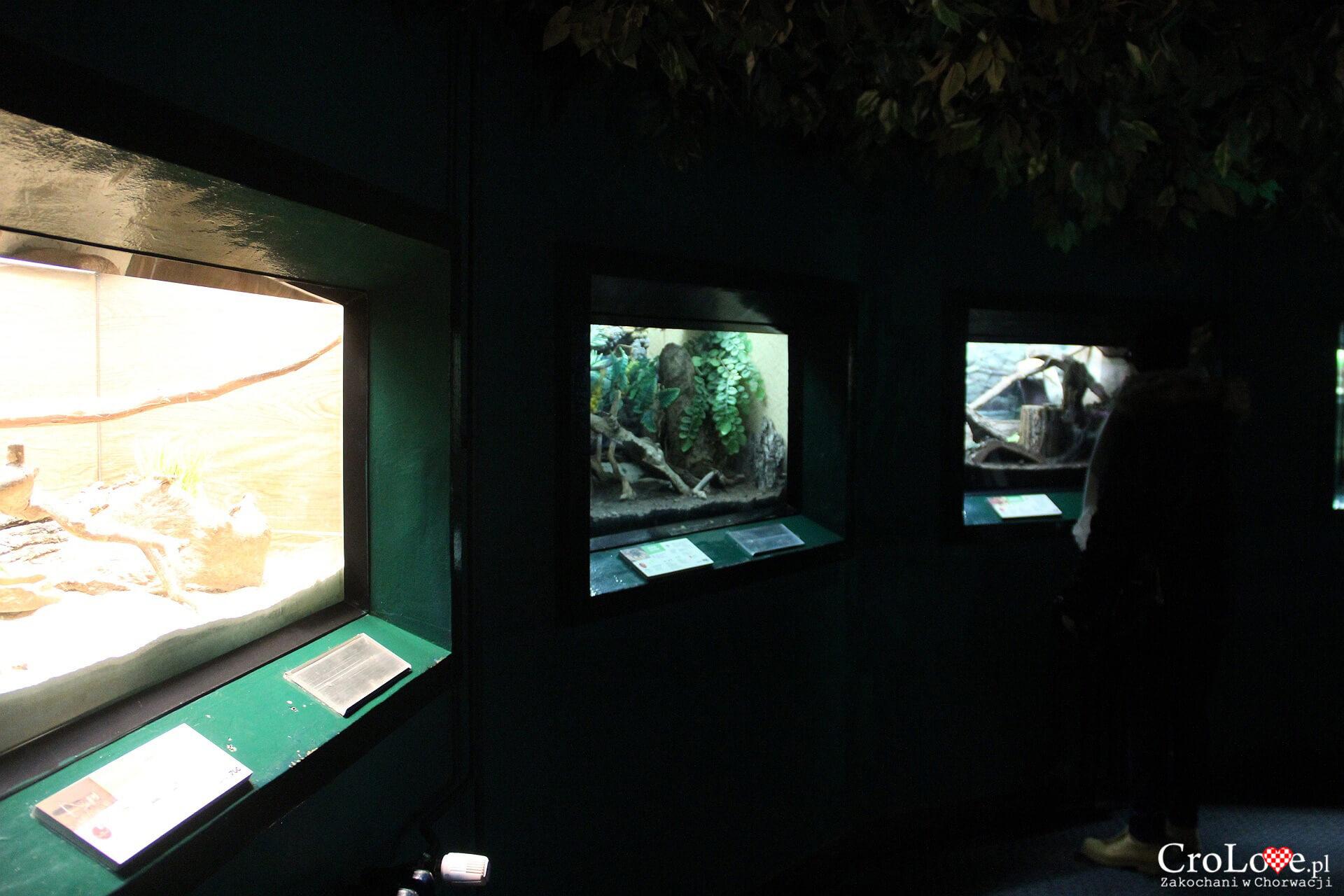 ZOO w Zagrzebiu