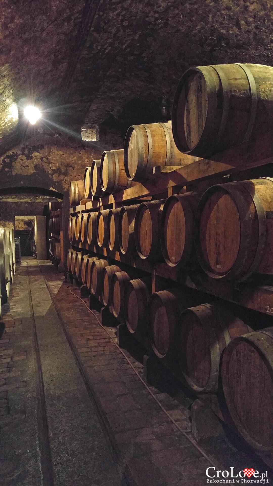 Wina Iločki podrumi w Iloku