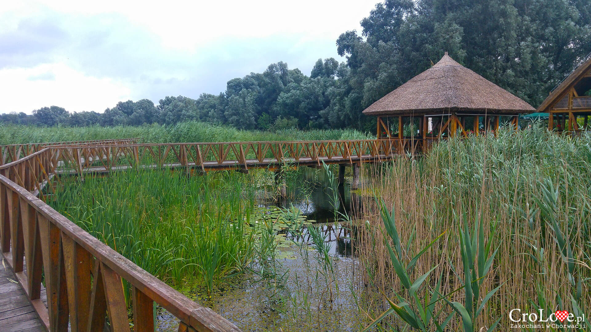 Park przyrodniczy Kopački Rit