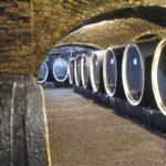 Kutjevo – stolica wina w kontynentalnej Chorwacji