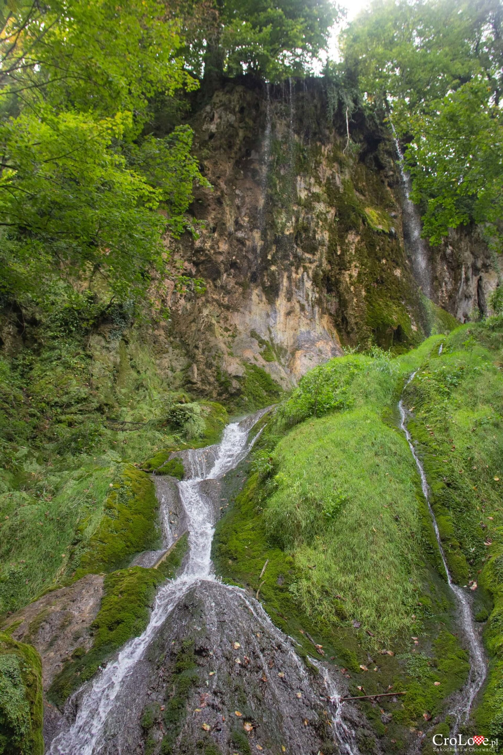 Park przyrody Papuk – Jankovac Mountain Park