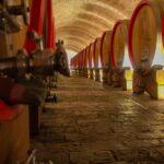 Winiarnia Vina Belje w Kneževi Vinogradi