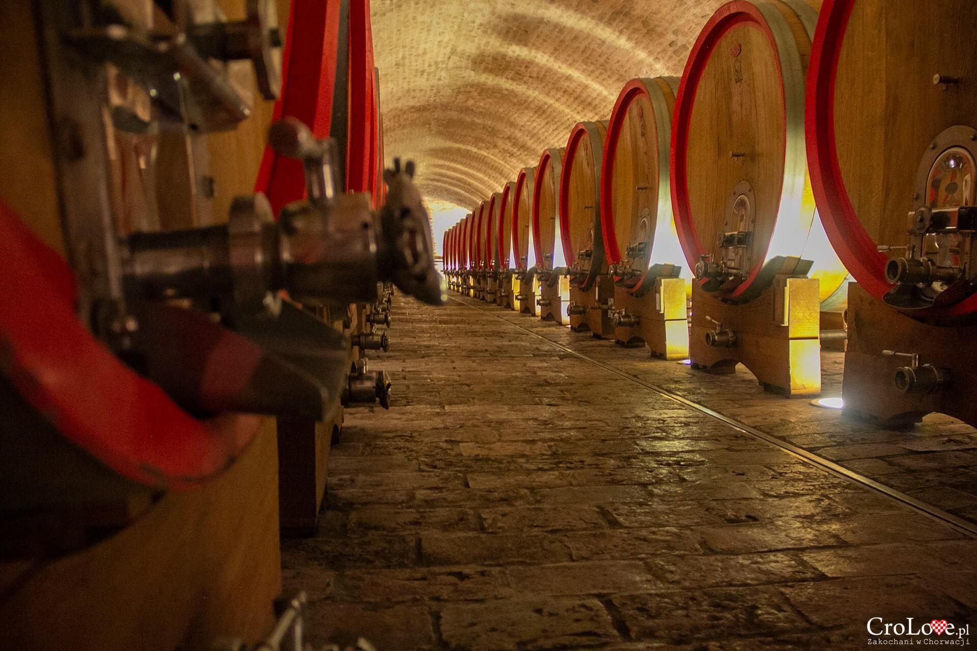 Winiarnia Vina Belje, Kneževi Vinogradi