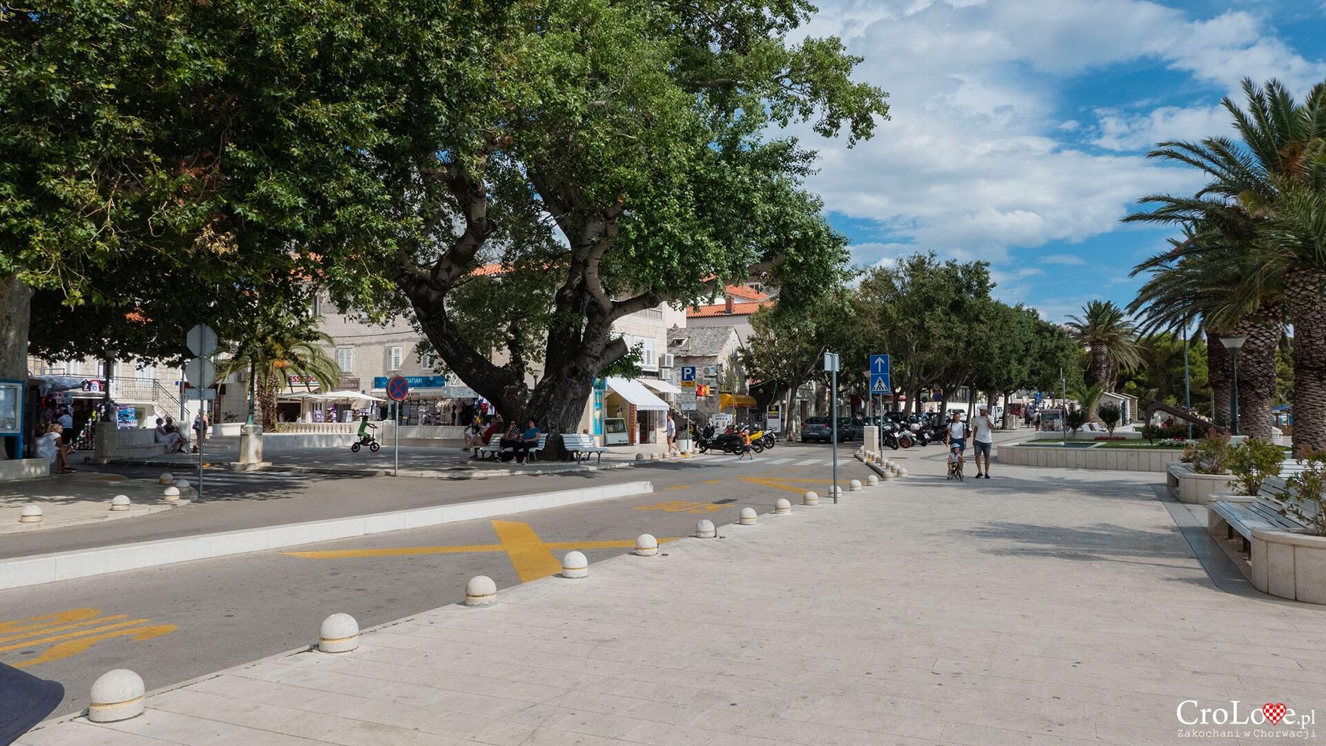 Baška Voda, Riwiera Makarska