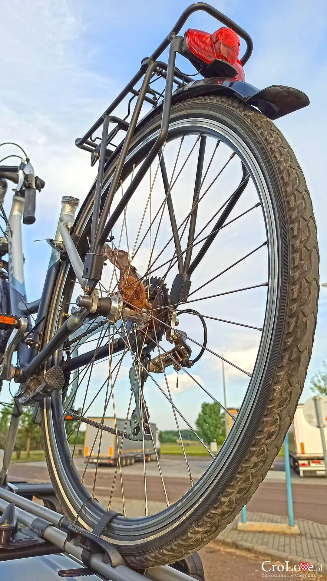 Nietoperz - Chorwacja rowerem