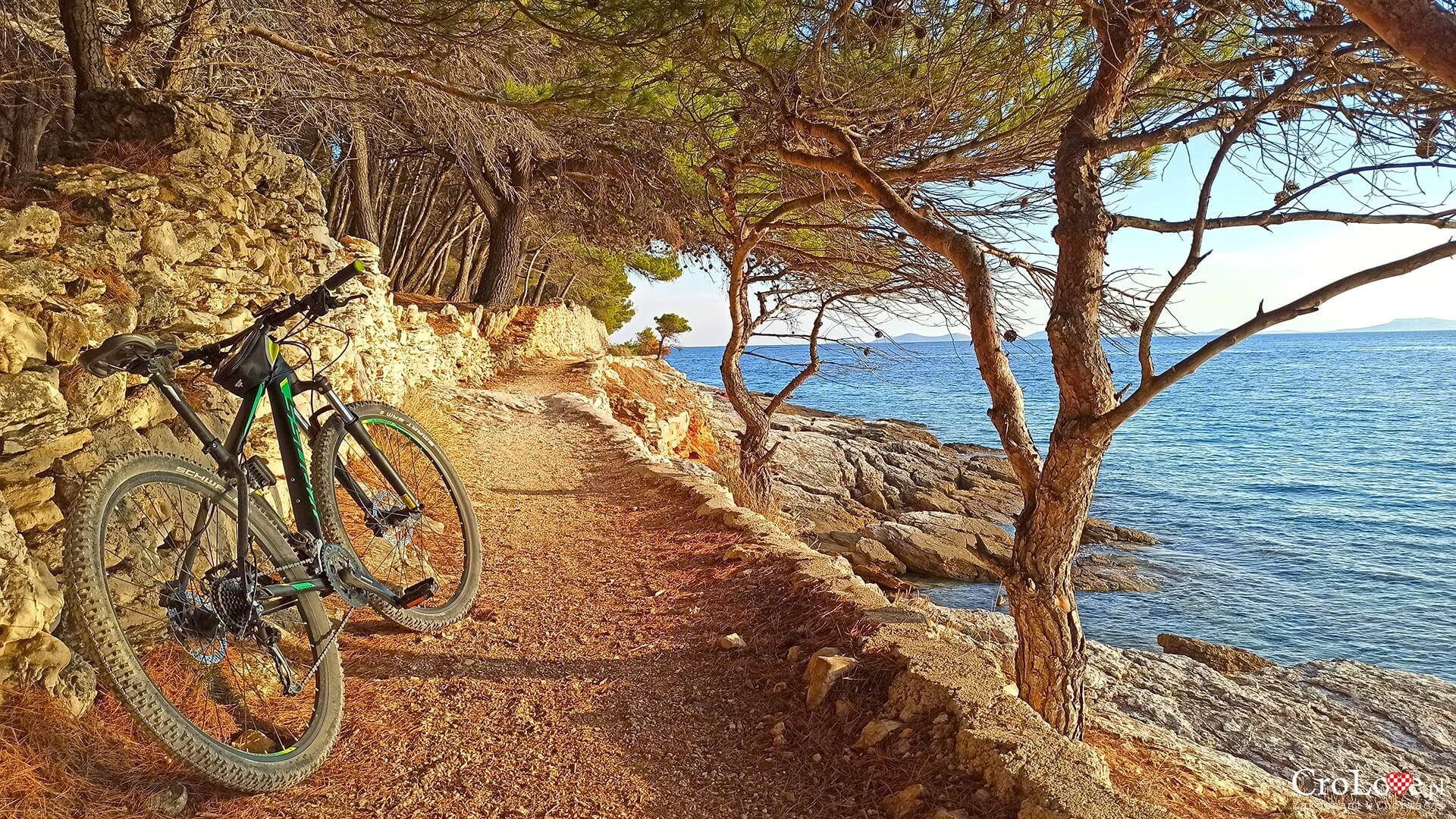 Wyspa Murter na rowerze