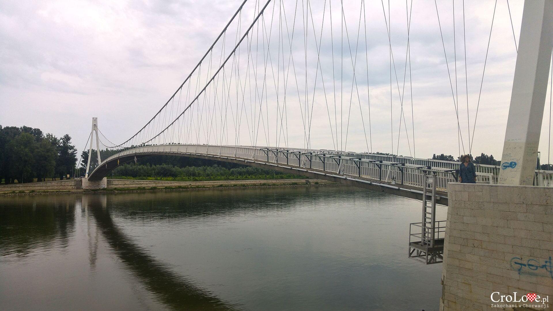 Most kładka młodości w Osijeku