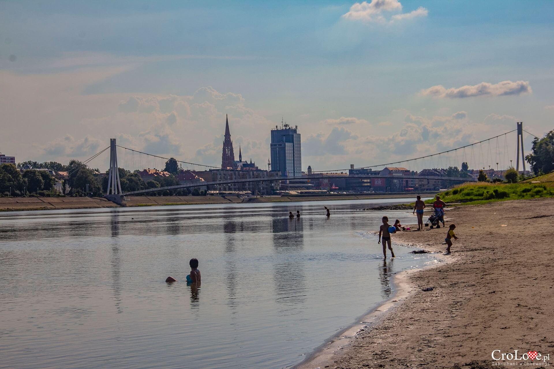 Plaża Copacabana na rzece Drawa w Osijeku
