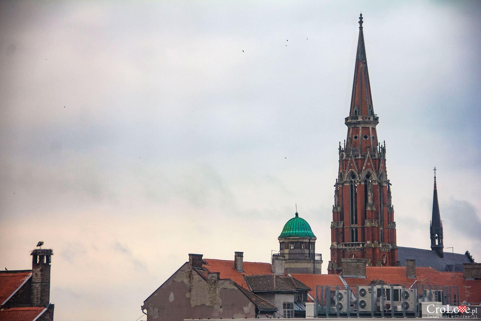 Konkatedra Świętych Apostołów Piotra i Pawła w Osijeku