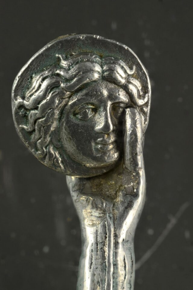 Judaszowy srebrnik Foto: Ivo Pervan / Wspólnota Turystyczna Miasta Nin