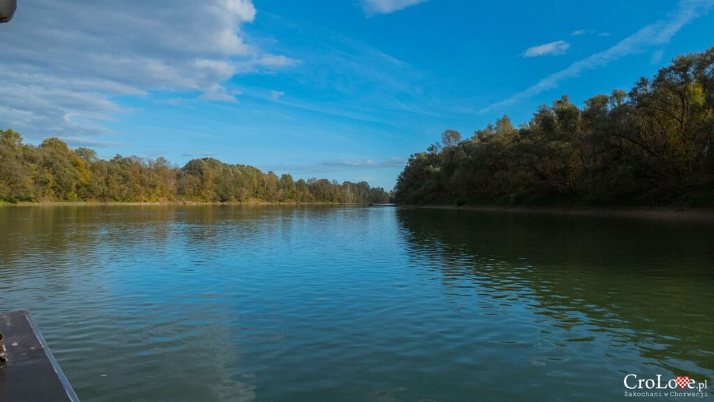 Park Przyrody Lonjsko Polje
