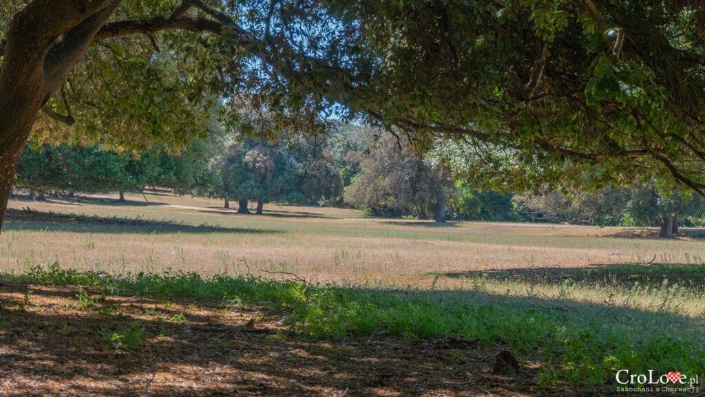 Park Narodowy Brijuni