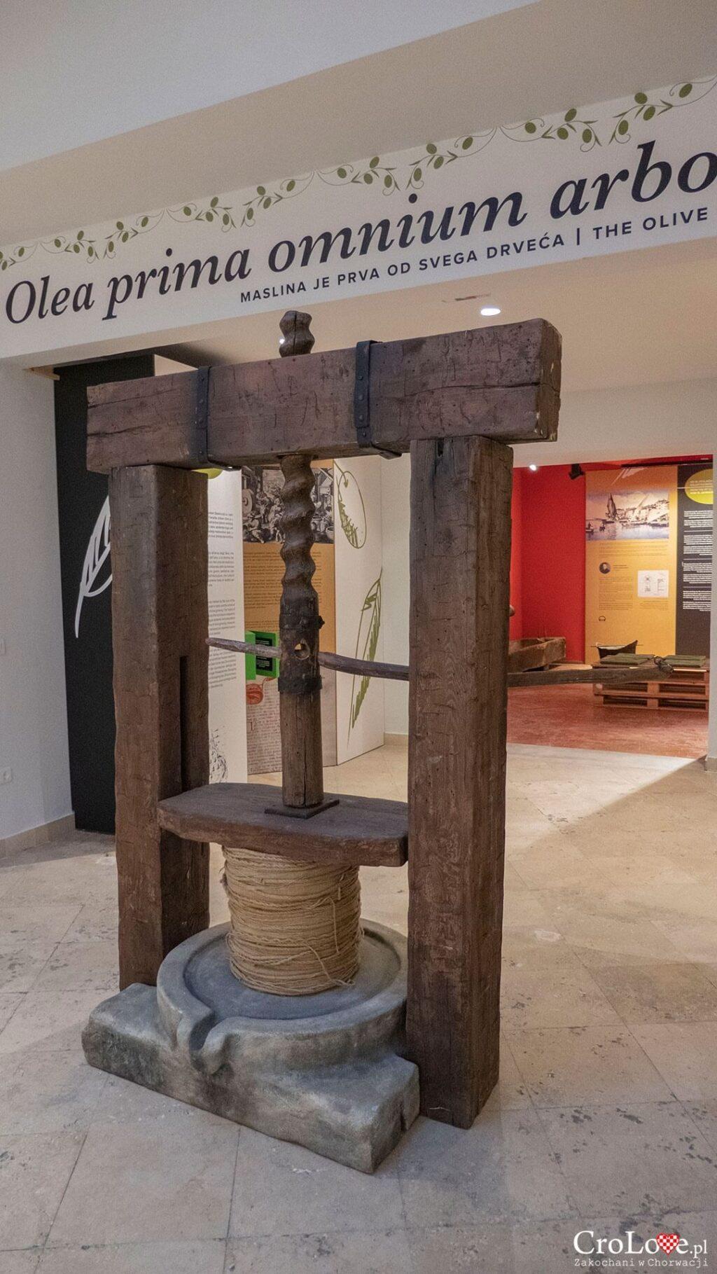 Muzeum Istryjskiej Oliwy w Puli